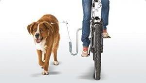 Fahrrad Hundegurt im Einsatz